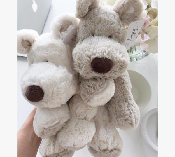 Teddykompaniet Teddy Cream beige ja valkoinen koiranpentu