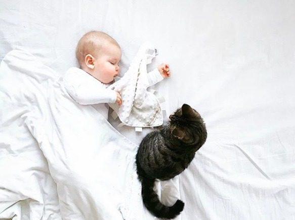 Mamas&Papas Welcome to the World uniriepu. Silkkisen sileä vaaleansävyinen uniriepu rauhoittaa vauvaa unille. Unirievun pinnalla on pieniä kohokuvioita, joita vauvat tutkivat mielellään. Vauvat näpertävät sormillaan unirievun ympärillä kulkevia kankaanpaloja juuri ennen nukahtamistaan. Uniriepu on niin pehmeää kangasta, että se tuntuu mukavalta vauvan poskea vasten!