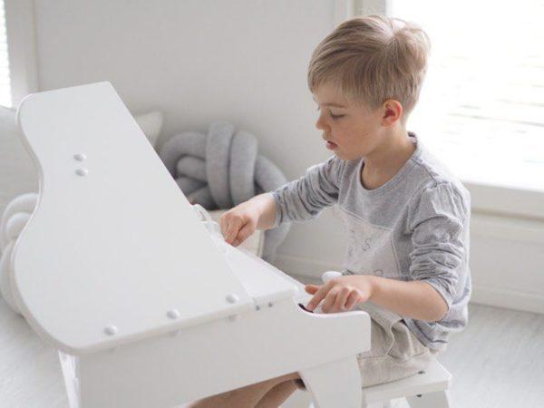 Tyylikäs pieni flyygeli on suunniteltu aloittelevalle pianistille. Puisessa flyygelissä on avattava kansi ja 30 kosketinta (yli kaksi oktaavia) joka mahdollistaa oikeiden kappaleiden soittamisen. Flyygelissä on upea sointi, äänen voimakkuus reagoi kosketukseen kuten isommissa soittimissa. Mukana on nuottiopas, jonka avulla soittamista on helppo lähteä harjoittelemaan yhdessä vanhemman kanssa.